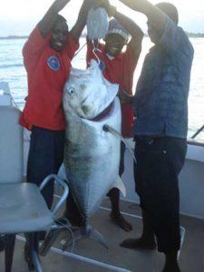 Pêche au gros sortie baleine Tamatave Fishing Club
