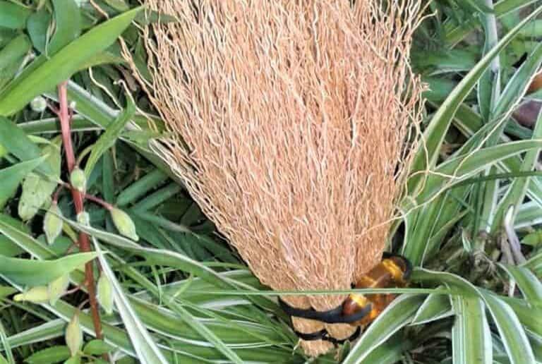 Artisanat vétiver Madagascar Bouquet-déco relaxation soporifique