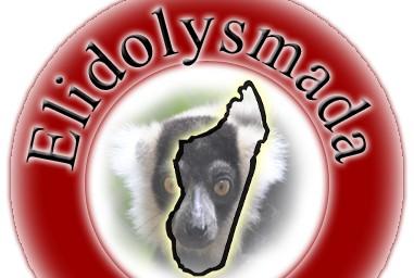 Elidolys Circuit Agence Tour De Madagascar Tamatave