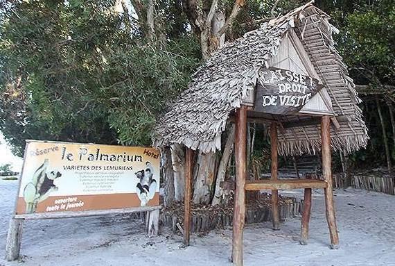 Palmarium Réserve Pangalanes Tamatave Madagascar