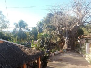 Chez Haja Et Vanina Chambre Dhôtes Centre Ville Majunga Madagascar