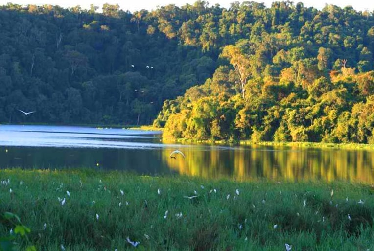 Parc National Ankarafantsika Flore Faune Endémique Majunga Madagascar
