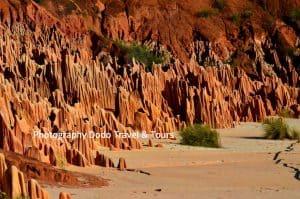 Dodo TravelTour Agence Organisation Voyage Tour Opérator Tana Madagascar